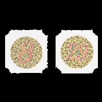 Ishihara kleurenblindheid test boek met 14 testkaarten